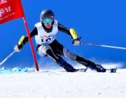 Alsace Ski Compétition, Groupe Elite 2016 – 2017