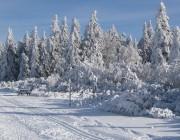 Les pistes de ski de fond sont tracées au Champ du Feu
