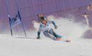 Stage de ski aux Arcs du 10 au 15 février 2019