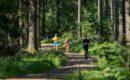 Ekiden 100% Nature – 30 juin 2019 – Le Champ du Feu