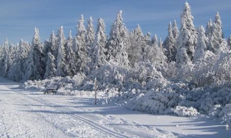 Enneigement et météo du site Nordique du Champ du Feu
