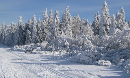 Domaine ski nordique
