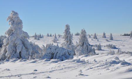 Ouverture des pistes de ski alpin au Champ du Feu samedi 2 Décembre